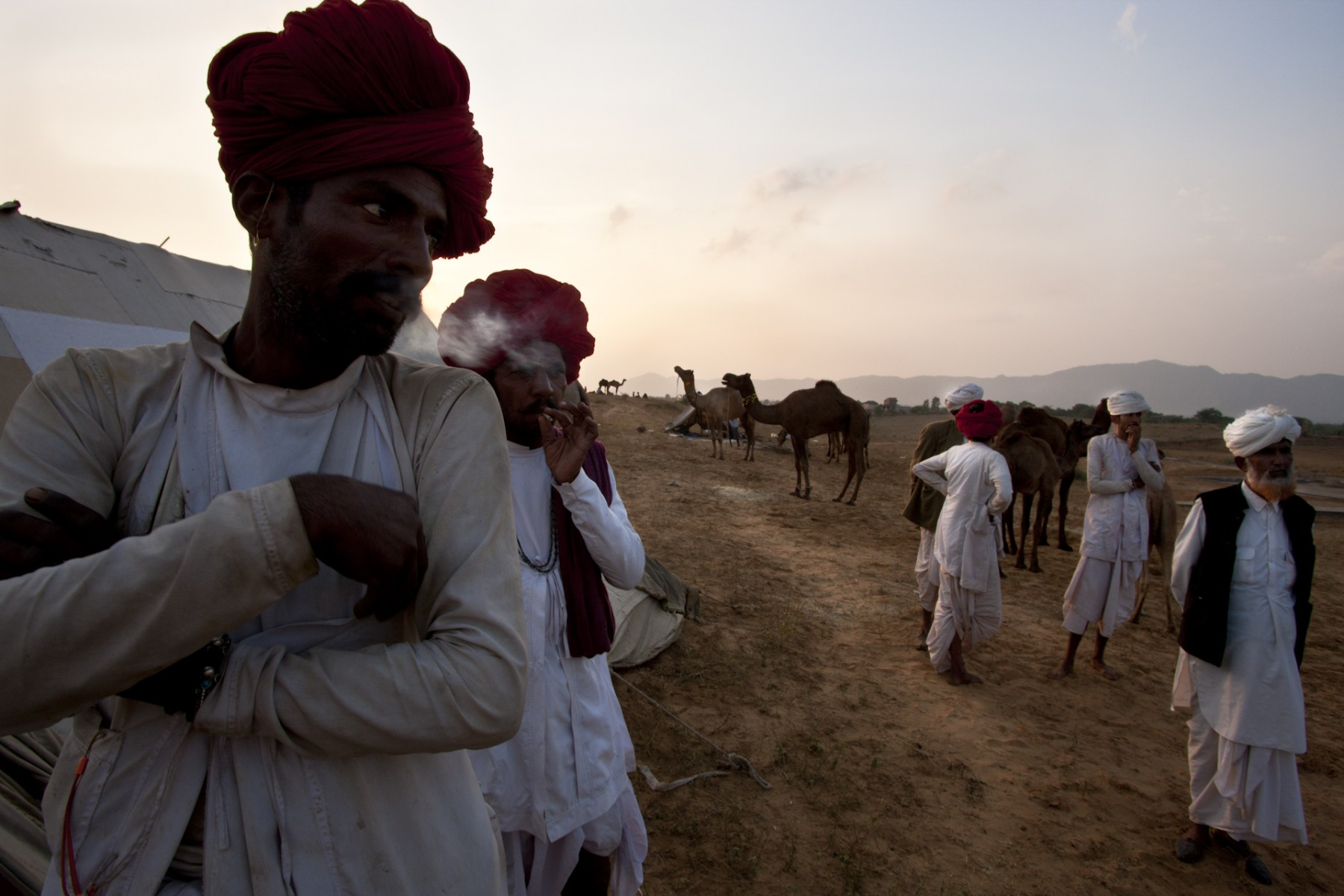 Camel traders at Pushkar Fair
