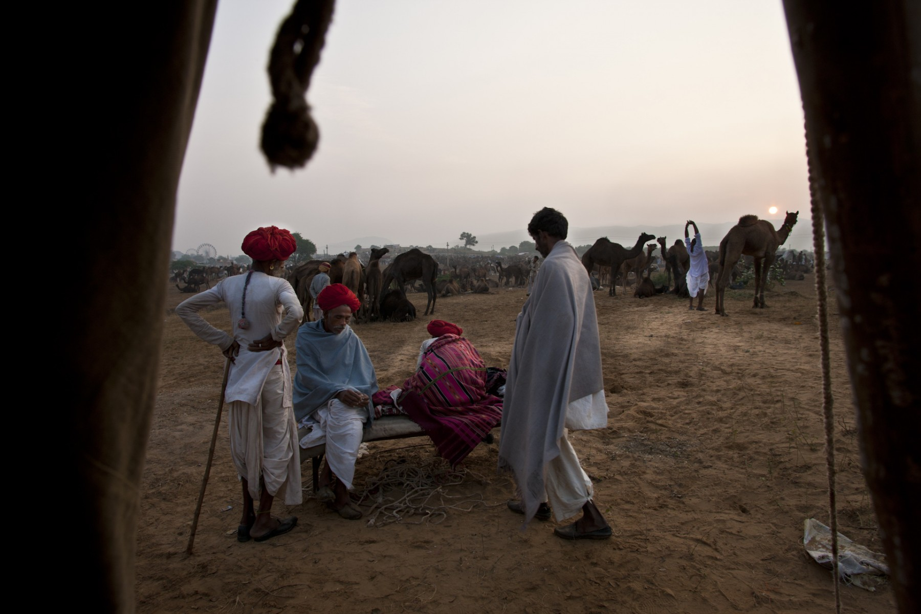 Sunrise at the Pushkar camel fair
