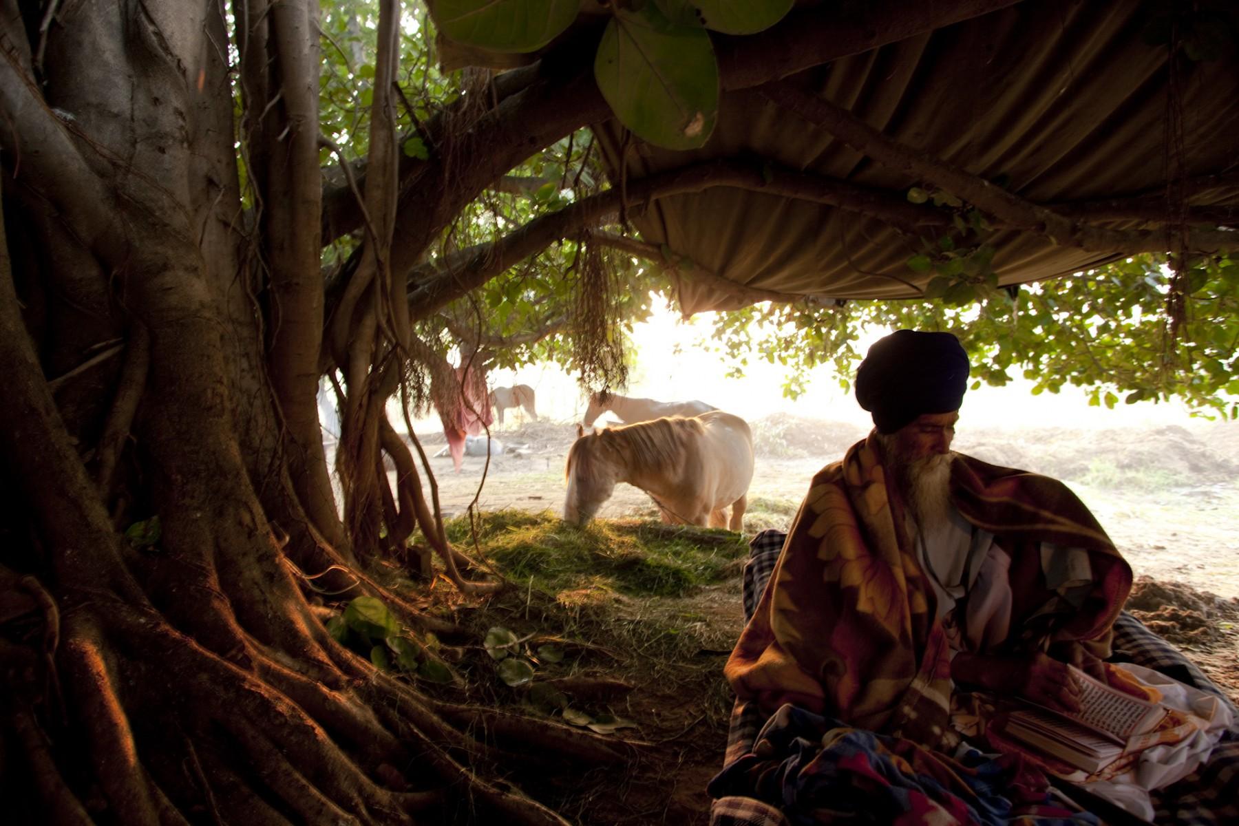 Balbir Singh reads under tree