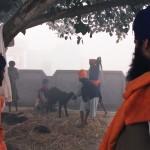 Goat slaughter