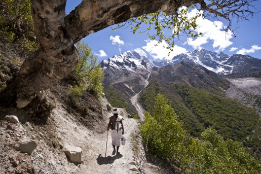 A lone pilgrim walks among stunning scenery as the path follows the steep sided valley from Gangotri.